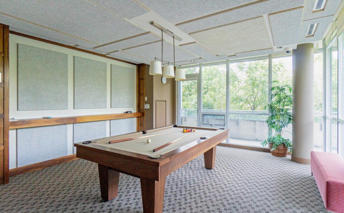 Stonebrook Condominiums-1055 Southdown Rd-Billiard