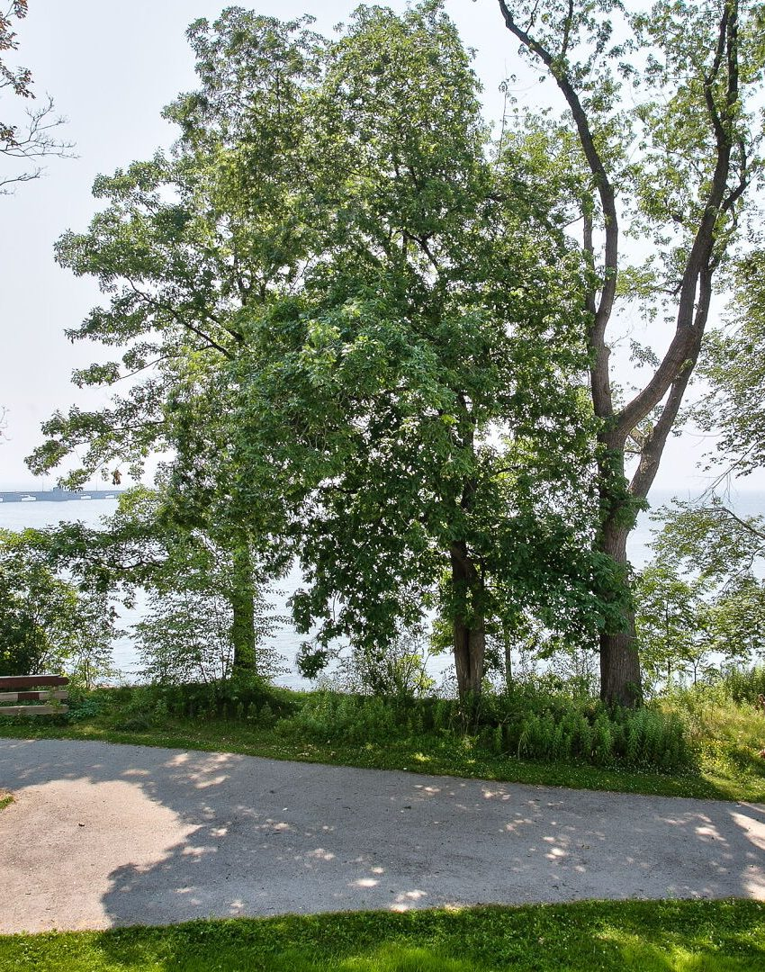 bluwater-condos-3500-lakeshore-rd-w-oakville-waterfront-luxury