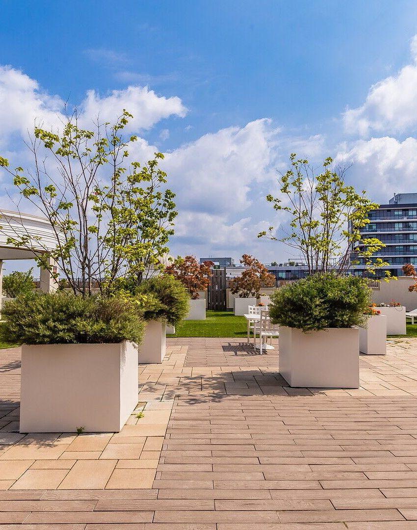 renaissance-oak-park-216-oak-park-blvd-oakville-condos-rooftop-terrace