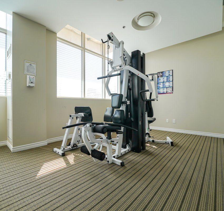 aquaview-3865-lake-shore-blvd-w-etobicoke-condos-long-branch-gym