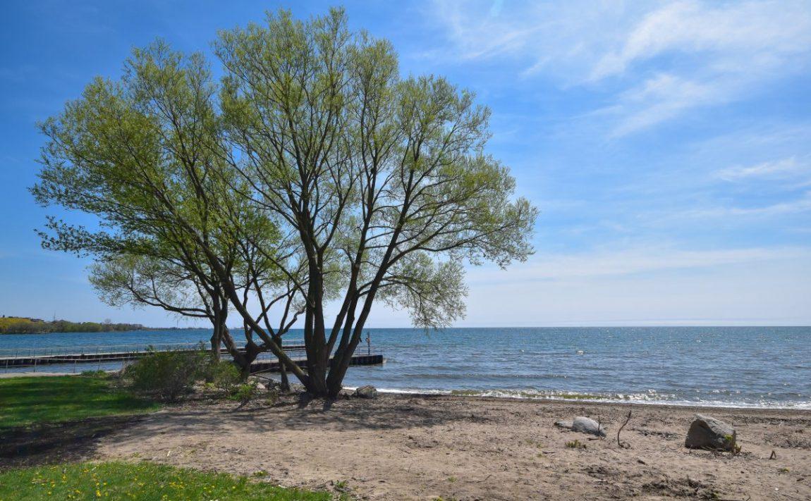 aquaview-3865-lake-shore-blvd-w-etobicoke-condos-long-branch-waterfront