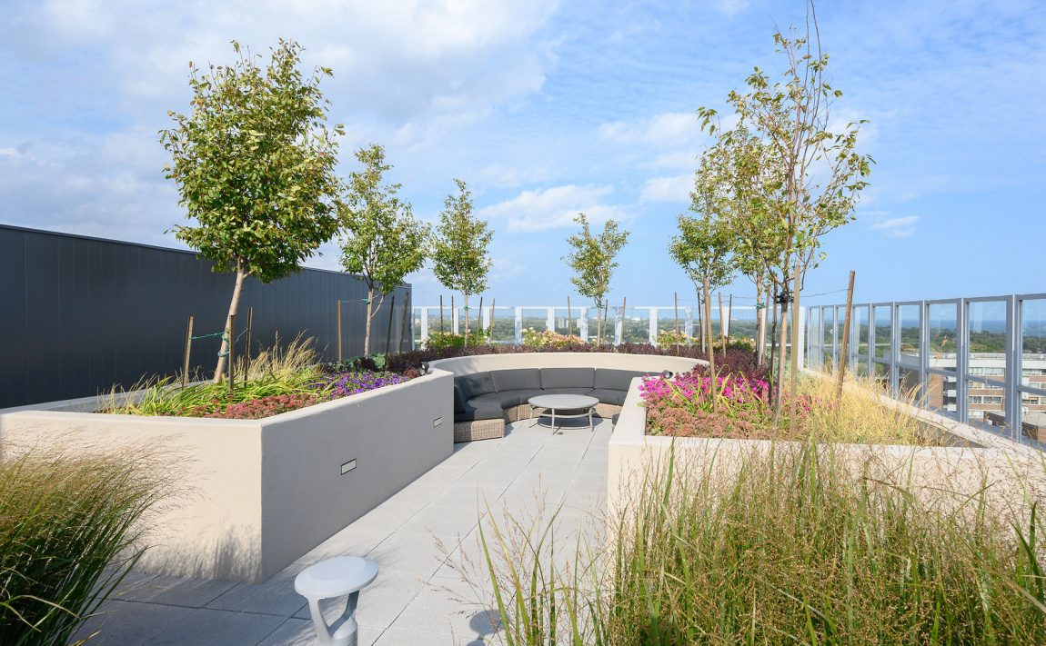 the-berkeley-condos-2025-maria-st-burlington-rooftop-terrace-amenities-lounge